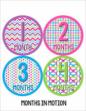 Baby Girl Monthly Photo Shirt Stickers 12 Month Milestone Sticker Newborn #045