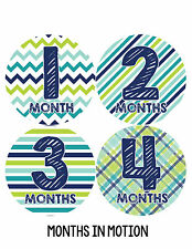 Baby Boy Monthly Milestone Birthday Stickers 12 Month Photo Shirt Sticker #003