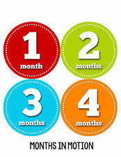 Baby Boy Monthly Milestone Birthday Stickers 12 Month Sticker Photo Prop #053