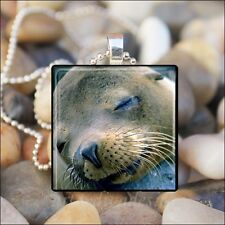 """""""SWEET SLEEPING SEAL"""" CUTE SEAL FACE GLASS TILE CHARM PENDANT NECKLACE KEYRING"""