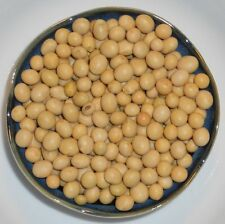 Bulk Organic Vegetable Soybeans (Glycine max) Planting ,Sprouts, Soy Milk, Tofu