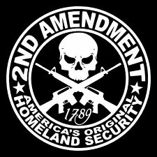 2ND AMENDMENT GUN vinyl decal sticker Window Truck Diesel car hunting 4x4 funny