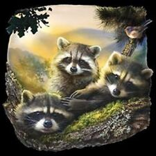 Cute Raccoons T-Shirt Youth and Adult Sizes Animal Backyard Animals Tee