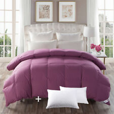 Queen Bed Pillows 2Pack Three Sizes Goose Down Comforter 100%Cotton Purple Cover