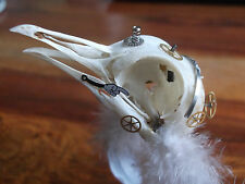 taxidermy curio steampunk pigeon skull mounted on wood and bone stand