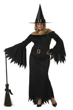 Brand New Plus Size Elegant Witch Halloween Adult Costume