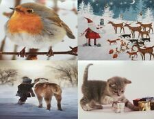 Animal Rescue Charity Christmas Cards 4 Designs to choose from