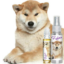 SHIBA INU RELAX DOG AROMATHERAPY FOR THUNDERSTORM, FIREWORKS FEARS DOG STRESS