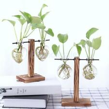 Tabletop Decorative Glass Hydroponic Vase Flower Plant Pot with Wooden Stand