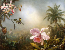 Heade Orchids, Nesting Hummingbirds and a Butterfly - Stretched Giclee Canvas