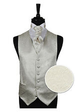 "Mens Ivory Scroll Waistcoat 34"" Chest, Shirt Cravat Hankie Package Wedding Wear"