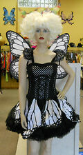 Twilight Butterfly Costume Adult Womens Costume By Fun World
