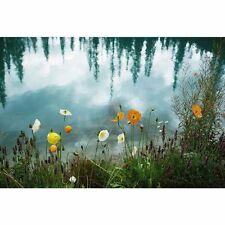 'Wildflowers Growing on Riverbank, Alberta, Canada' Photography Canvas Print