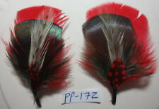 Various Hat Band Feather Hatband Feathers Classic Fedora Cowboy Trim #PP Series