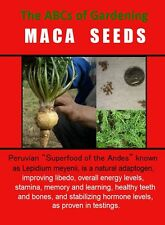 Maca Root Seeds - Grow Your Proven Organic Libido Enhancer - Lepidium meyenii