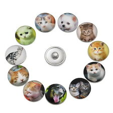 Wholesale Lots Glass Snap Buttons For Snap Button Jewelry Pet Pattern B80164