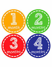 Baby Girl/Boy Gender Neutral Monthly Baby Stickers Month Milestone Sticker 023