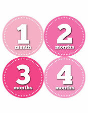 Baby Girl Monthly Baby Stickers 12 Month Milestone Birthday Sticker Photo #338