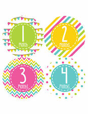 Baby Girl Monthly Baby Stickers Milestone Month Sticker Months In Motion 346