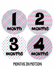 Baby Girl Monthly Photo Shirt Stickers 12 Month Milestone Sticker Newborn #203