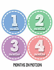 Baby Girl Monthly Baby Stickers 12 Month Milestone Birthday Sticker Photo #093