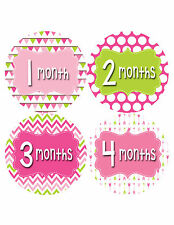 Baby Girl Monthly Baby Stickers 12 Month Age Sticker Just Born Photo #402