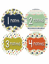 Baby Girl Monthly Baby Stickers 12 Month Age Sticker Just Born Photo #404