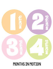 Baby Girl Monthly Baby Stickers 12 Month Age Sticker Just Born Photo #191