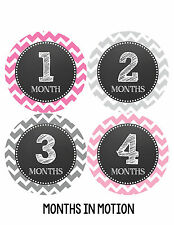 Baby Girl Monthly Photo Shirt Stickers 12 Month Milestone Sticker Newborn #069