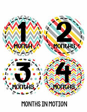 Baby Boy Monthly Milestone Birthday Stickers 12 Month Photo Shirt Sticker #265