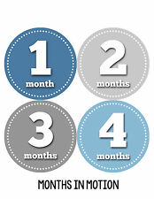 Baby Boy Monthly Milestone Birthday Stickers 12 Month Sticker Photo Prop #052