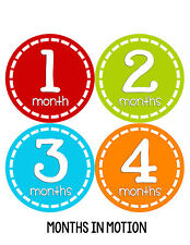 Baby Boy Monthly Milestone Birthday Stickers 12 Month Photo Shirt Sticker #256