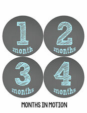 Baby Boy Monthly Milestone Birthday Stickers 12 Month Sticker Photo Prop #123