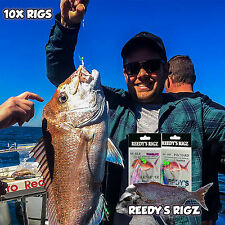 10 Snapper Rigs Flasher Rig 60lb Leader Circle Hook Reef Fishing Big Red Winter
