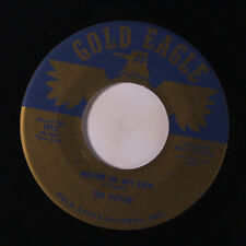TED TAYLOR: Never In My Life / No Matter What You Do 45 Soul