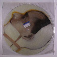 KISSING THE PINK: Love Lasts Forever +2 12 (UK, pic disc, PVC sleeve) Rock & Po
