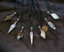 """One Natural """"Cage Wrapped"""" Sea Shell Pendant Necklace with Cord & Bail"""