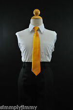 Boys Satin Clip on Long Neck Tie Yellow matching Boy suit 8 10 12 14 (11 Colors)