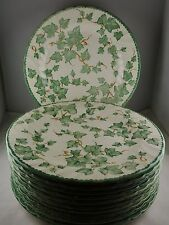 Eleven Royal Stafford Country Vine Earthenware Dinner Plates - Green Ivy Motif