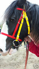 DUAL COLOUR BRIDLE Shetland, Small Pony, Pony, Cob, F/S. Synthetic web washable