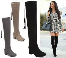 LADIES WOMENS MID BLOCK HEEL OVER THE KNEE BOOTS PARTY FAUX SUEDE  FASHION SHOES