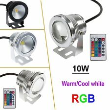 IP68 10W LED Underwater Spot Light RGB Warm Cool White Pond Pool Lamp 12V Driver
