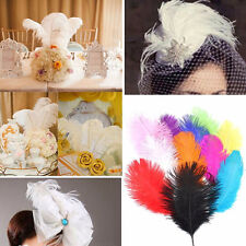 New 10pcs Wedding birthday party Natural ostrich feathers 6-8inch/15-20cm Bulk