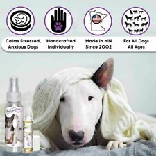 THE BLISSFUL DOG BULL TERRIER RELAX DOG AROMATHERAPY FOR SCARED, OCD BULLIES