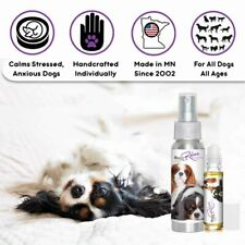 CAVALIER KING CHARLES SPANIEL THE BLISSFUL RELAX DOG AROMATHERAPY ANXIETY STRESS