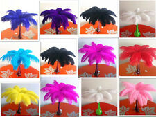 Wholesale 10-100pcs high quality natural ostrich feathers 8-10 inch / 20-25cm