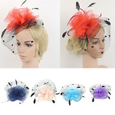 Wedding Races Party Bridal Lady Prom Veil Feather Fascinator Hair Clip Headwear