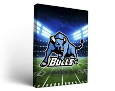 Suny Buffalo Ub Bulls Canvas Wall Art Stadium Design