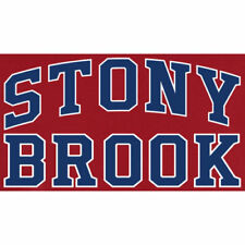Stony Brook Seawolves Everyday Pullover Hoodie - Red - NCAA