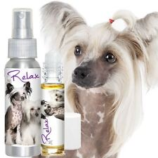 CHINESE CRESTED RELAX DOG AROMATHERAPY FOR THUNDERSTORMS SCARED, ANXIOUS DOGS